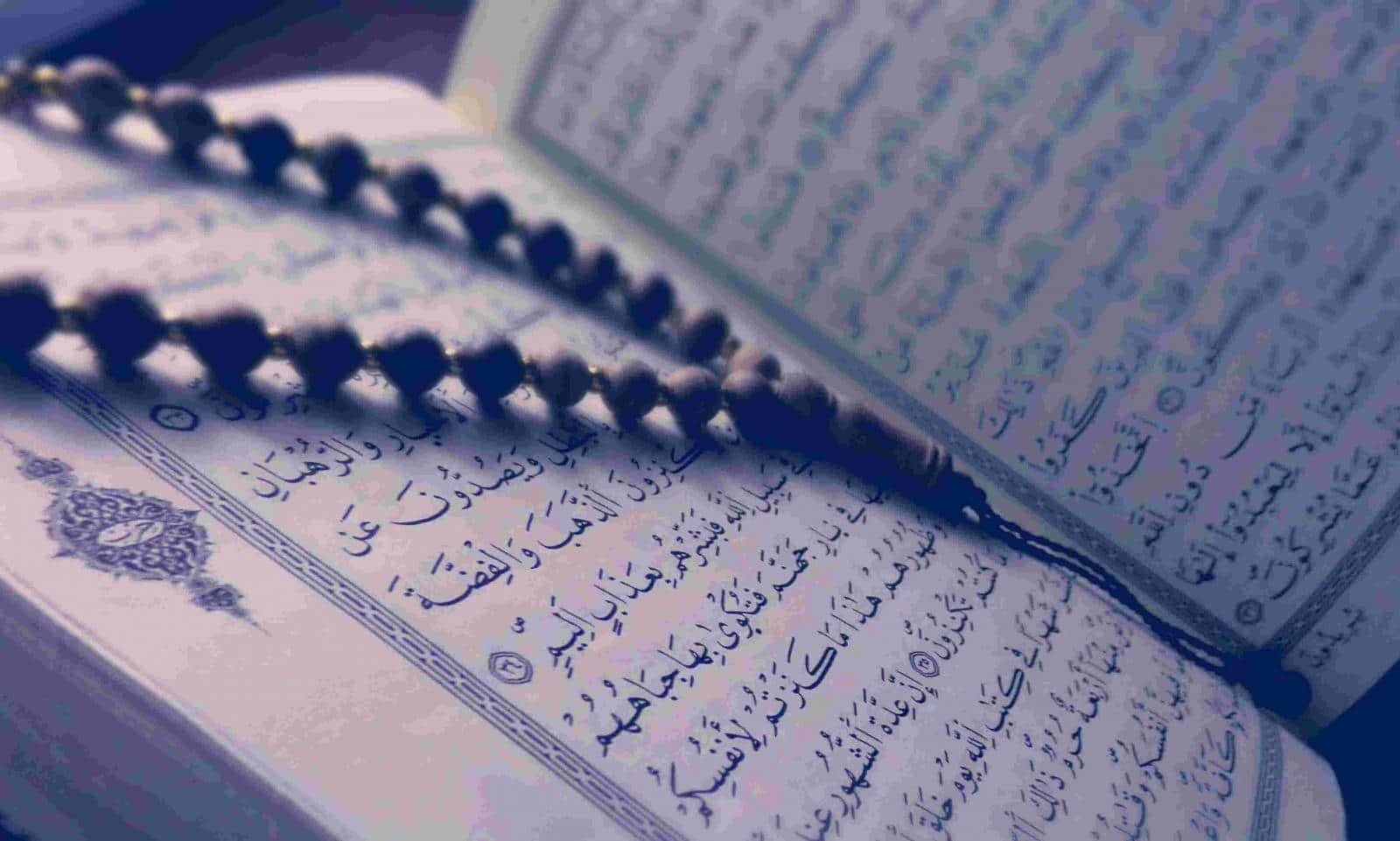 All for all Quran Courses